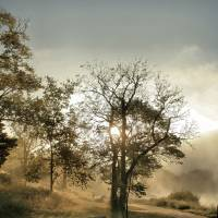 Misty Morning HDR Art Prints & Posters by Chris Wolters Photography