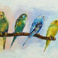 """Four Parakeets"" by creese"