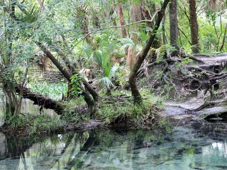 Lovely Lithia Springs