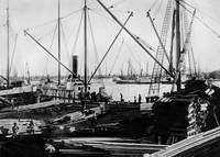 Ships Loading Lumber, Oakland Estuary c. 1860 by WorldWide Archive