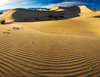Death Valley Dunes_Panorama2-2