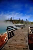 Yellowstone gallery