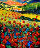 Poppies in Tuscany