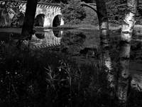 Sudbury River Aquaduct Reflection In B&W
