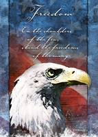 Eagle Troop Support Freedom Card