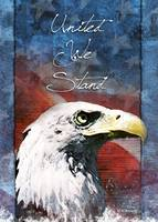 United We Stand Eagle Troop Support Card