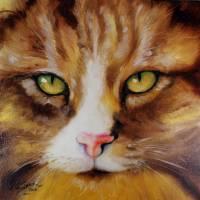 AMBER EYES SWEET KITTY by Marcia Baldwin