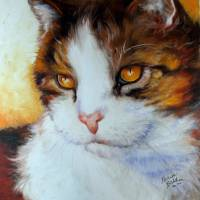 CAT EYES GOLDEN SWEET KITTY SERIES M BALDWIN ORIG by Marcia Baldwin