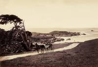 Monterey Coastline c1880 by WorldWide Archive