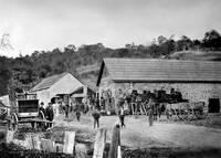 Los Gatos Blacksmith by WorldWide Archive