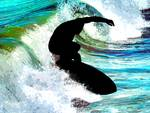 Surfer in Curling Wave