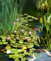 Koi Pond and Water Lilies