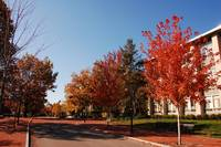 PSU - Pollock Road in Autumn