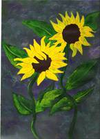 Sunflowers on Blue