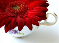 A cup of flower.
