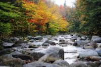 View of a Rocky Creek During Fall, Lost River