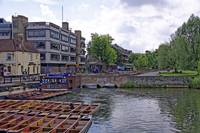 Cambridge, late Spring 27 by Priscilla Turner