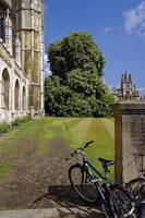 Cambridge, late Spring 46 by Priscilla Turner