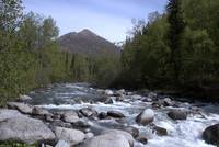Alaska Little Susitna River