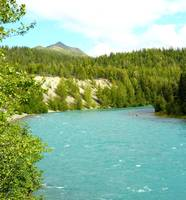 Kenai River And Fishing