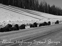 Alaska Highway Speed Bumps