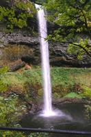Silver Falls, Oregon, USA