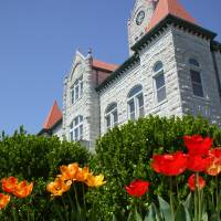 Courthouse tulips Art Prints & Posters by Nick Wright