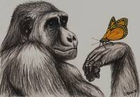 Ape with butterfly