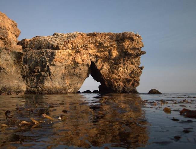 Kelp Under and Arch Above
