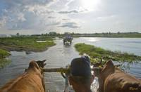 Crossing the Rapti by ox cart
