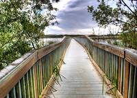 Oso Flaco Lake boardwalk