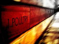 1 Poultry