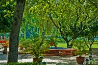 The gardens of Gandhi Smitri Memorial Museum Delh