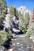Cascade on the Custer