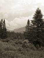 Crawford Notch I