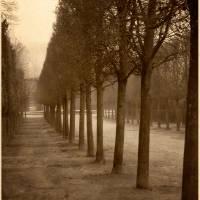 """In the Gardens of Versailles"" by EdmundLowe"