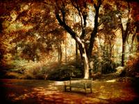 Autumn Repose