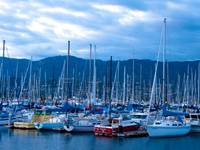 Boats in the Santa Barbara Harbor