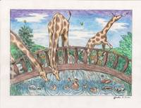 giraffe bridge