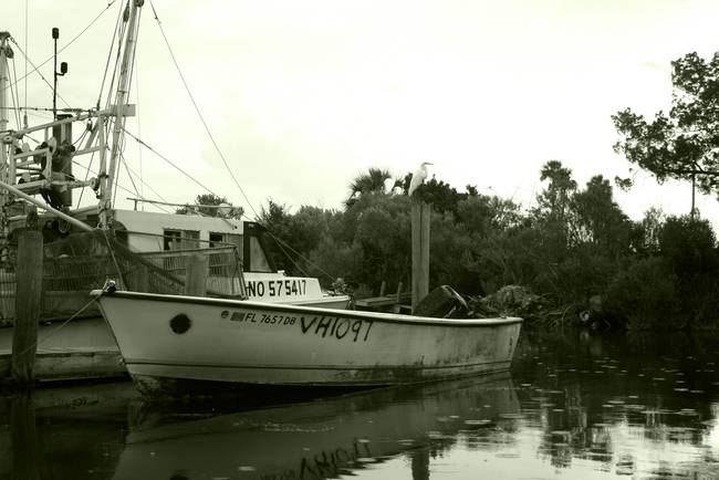 Stunning commercial fishing boat artwork for sale on for Commercial fishing boats for sale gulf coast