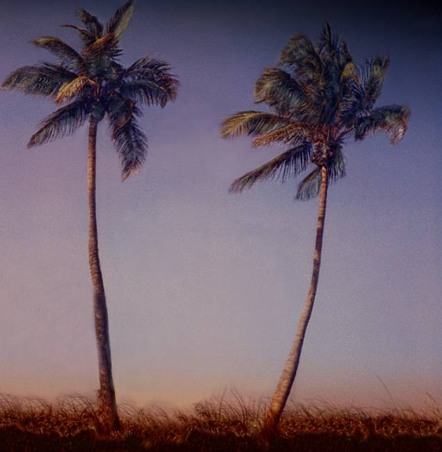 Two Tall Palms, at Sunset