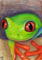 ACEO Frog