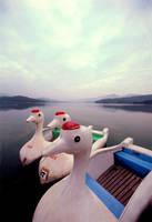 Duck Boats China by Joe Gemignani