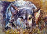 Wolf In The Weeds