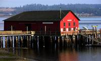 Coupeville Wharf in the Morning