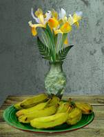 Plantains and Yellow Irises