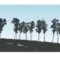 """""""Treeline, Napa"""" by John McConnico"""