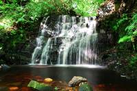 Dappled Waterfall