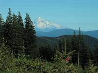 Mt. Hood in Portland Oregon, view 1