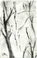White Monotype Tree